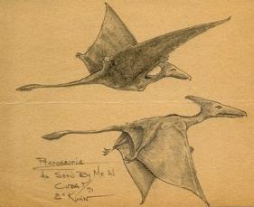 Kuhn pterosaurs
