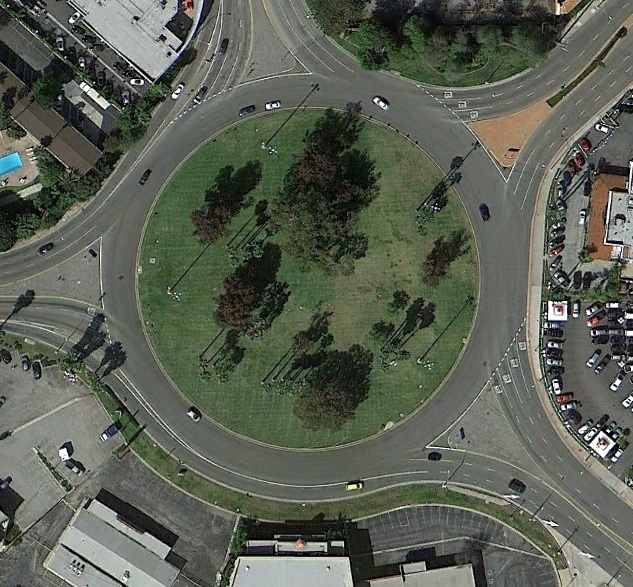 Photo of &quot;Traffic Circle&quot; in Long Beach, California - possible pterosaur sighting