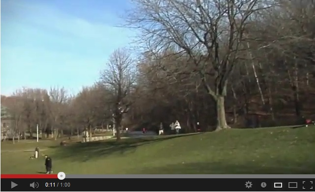 hoax video shows shadows going to the left on the right side of the meadow