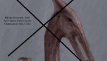 Gitmo-Pterosaur-smallest-33-med-censored