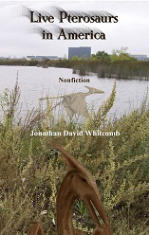 "cryptozoology book ""Live Pterosaurs in America"""